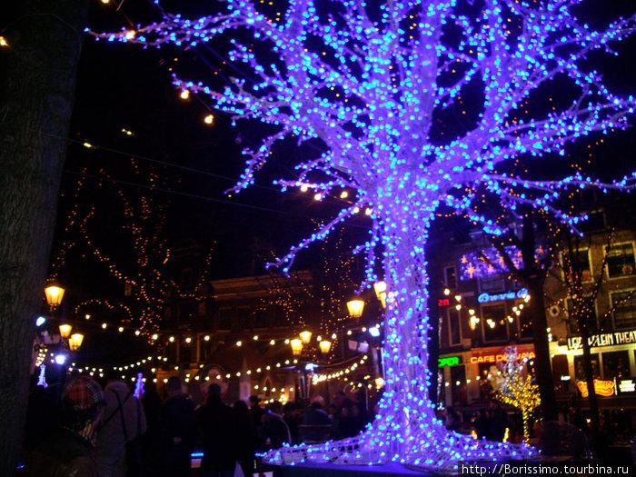 Рождественские украшения преображают город с наступлением темноты.