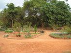 жители Ауровиля — прекрасные садовники