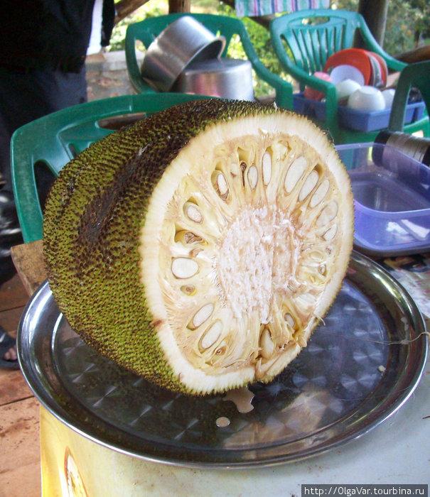 Джако — экзотический фрукт