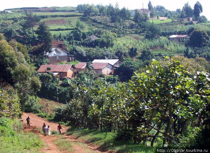Поселок, в котором находится детский приют
