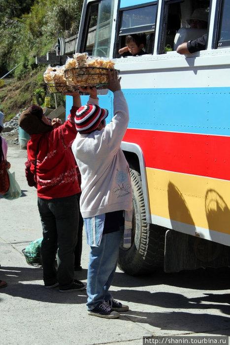 Торговцы у автобуса