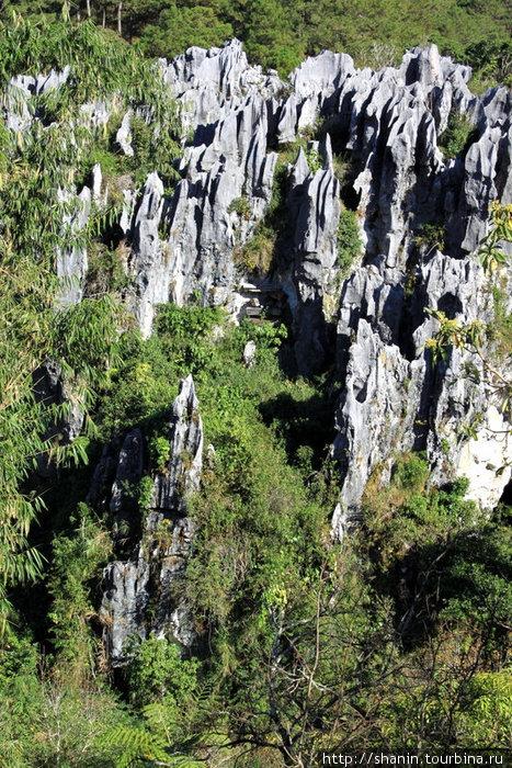 Висящие на скалах гробы — нужно приглядываться