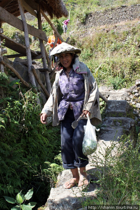 Местные жители тоже ходят пешком по террасам