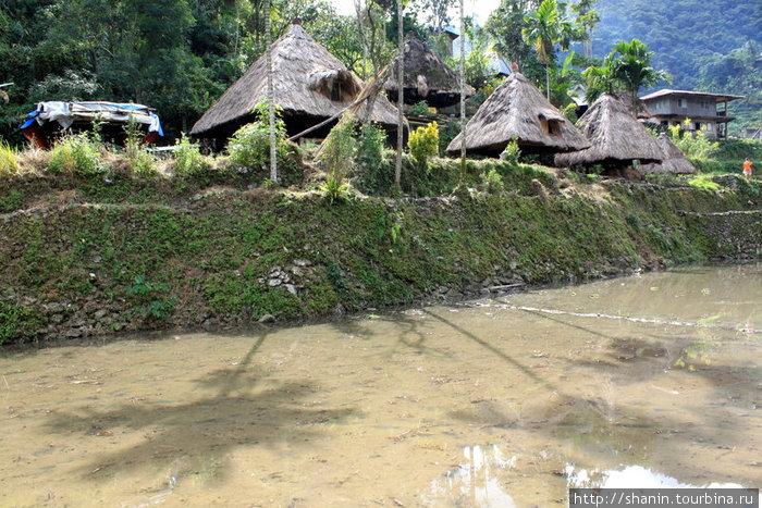 Традиционные дома