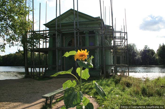Павильон Венеры на острове Любви.