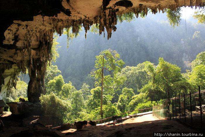 Выход из Великой пещеры