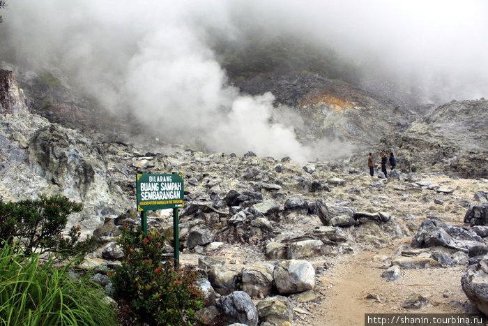 В кратере Кавах Домас идет термическая активность