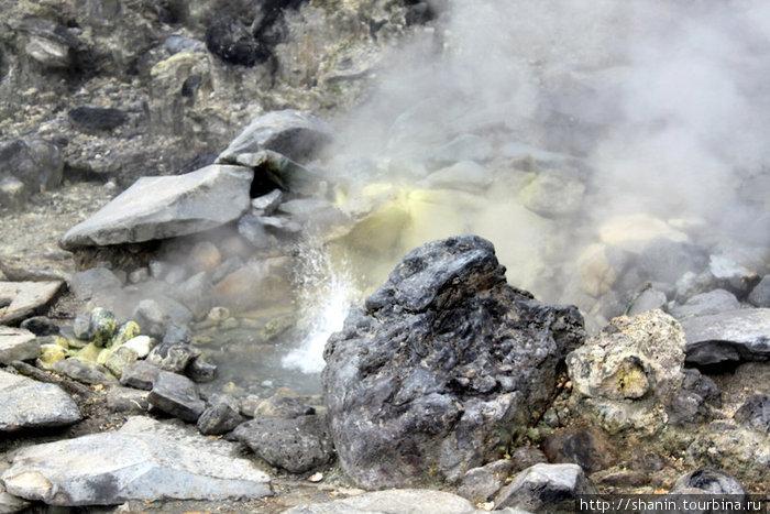 Горячие источники в кратере Кавах Домас