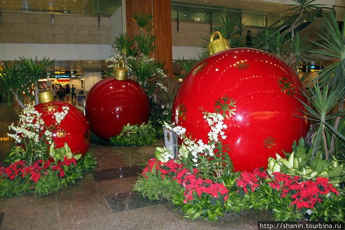 В сингапурском аэропорту новогодние украшения еще остались