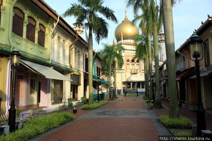 Мечеть Султан в окружении типично китайских домов