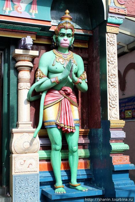 Бог обезьян в индуистском храме