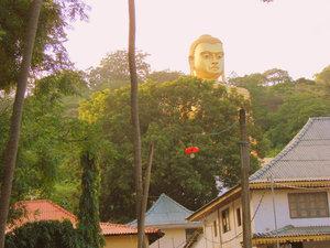 Будда выглядывает из-за деревьев