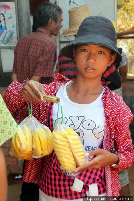 Продавщица ананасов и манго
