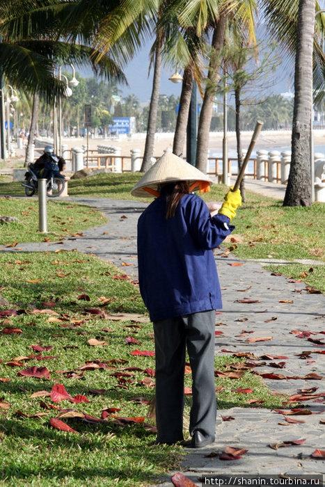 Уборка сухой листвы