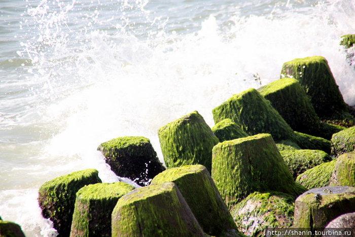 Бетонные блоки защищают песчаный пляж от разрушения