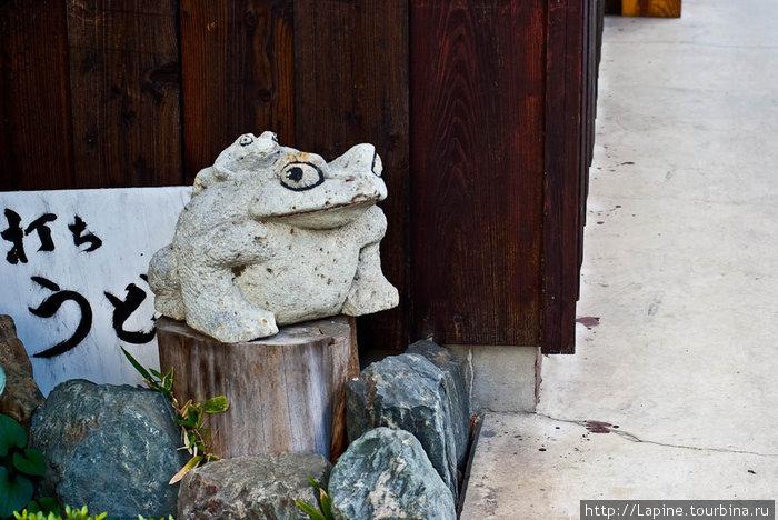 Каменные лягушки