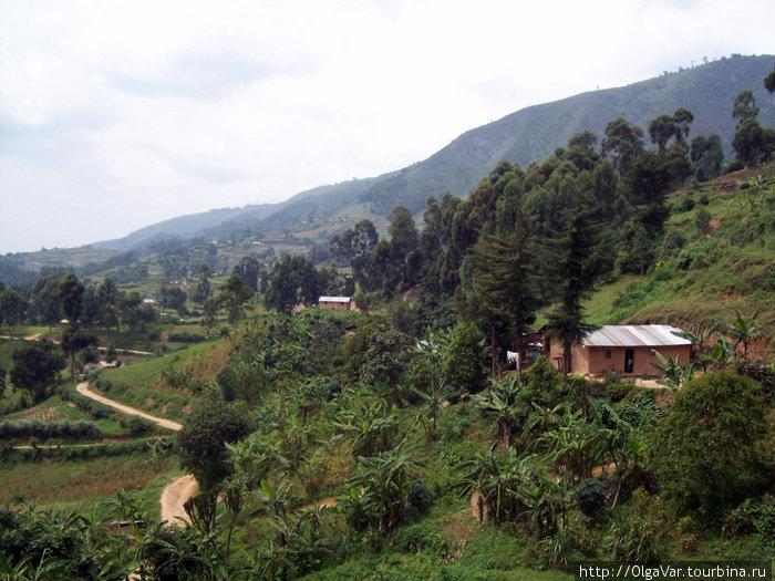 Угандийские горы