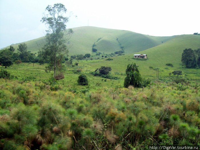 Красота по-угандийски