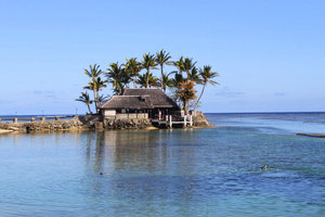 Где есть островок радости...