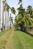 Лаутока- второй по величине город Фиджи
