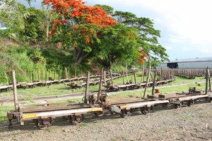 Вагонетки для перевоза сахарного тростника- Лаутоку называют Сахарным городом