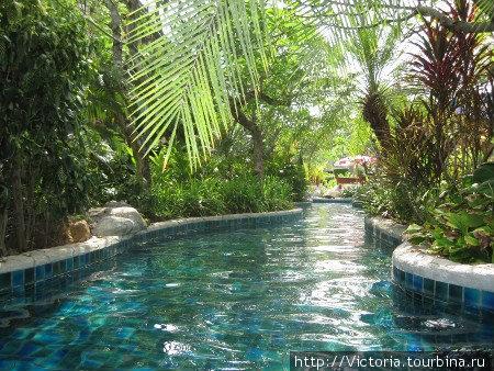 Мое подводное путешествие по бассейнам отеля Ката Палм Резот началось.