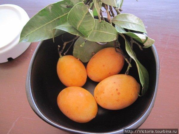 Что это такое я так и не узнала. На рынке название спросить не догадалась, а в интернете не нашла похожих картинок. Не знаю что, но вкусное. Если вам знаком этот фрукт, признавайтесь!