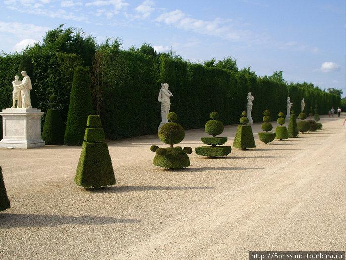 Парк вокруг дворца.