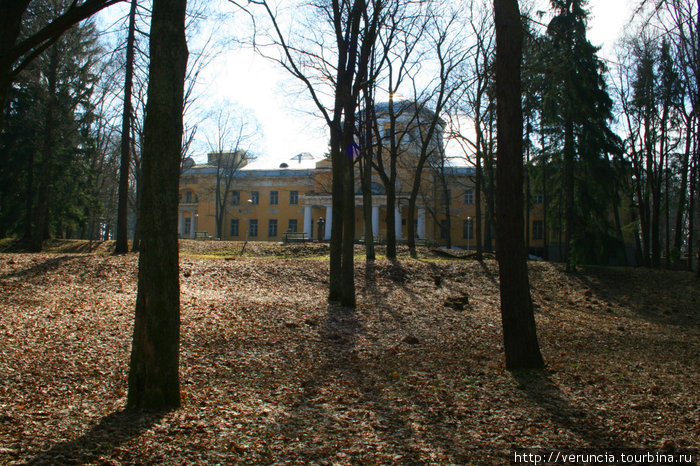 Дворец Воронцова-Дашкова.
