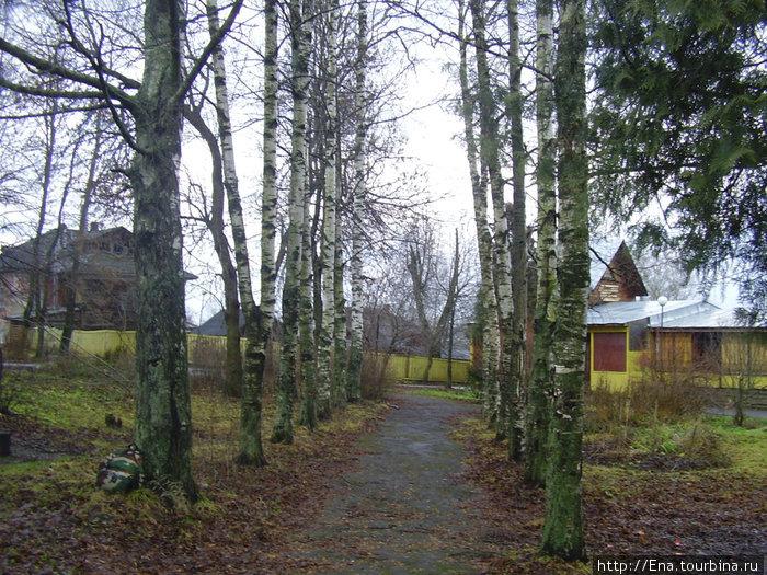 Данилов-декабрь 2008. Летний сад