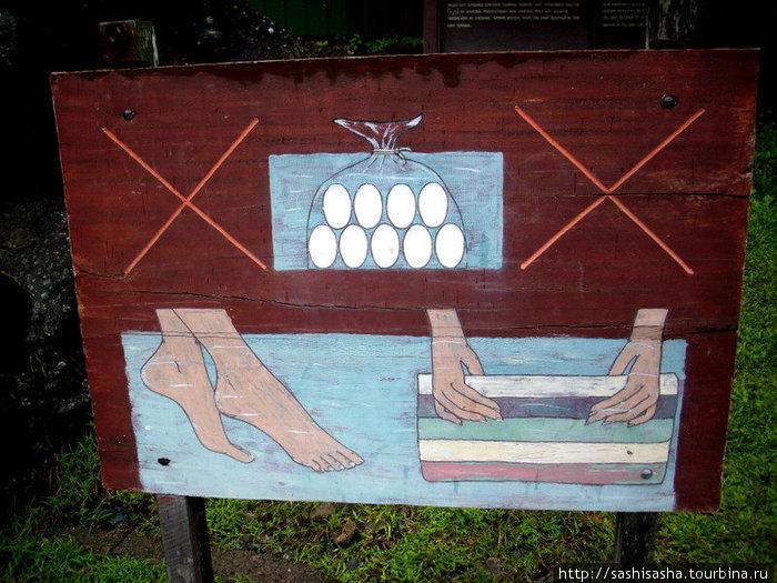 Яйцы варить запрещено!