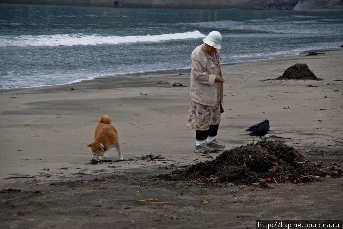 Старушка и море