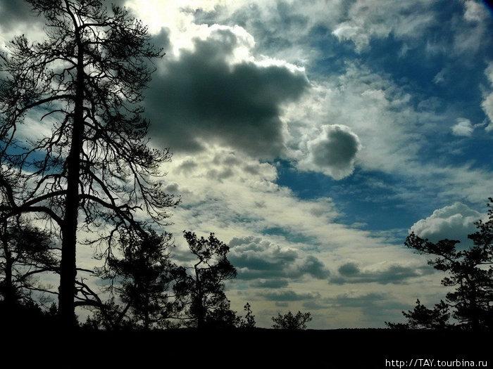 Майское путешествие в Каменный лес Сызрань, Россия