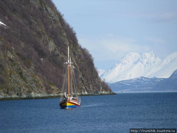 Парусник под французским флагом зашёл в нашу бухту чтобы забрать группу горнолыжников. Они спустились с ледника