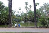 Пруд в центральном парке