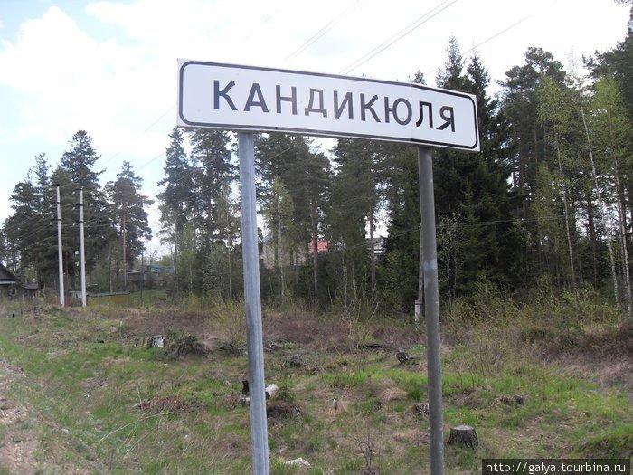 деревня Кандикюля (уже погранзона)