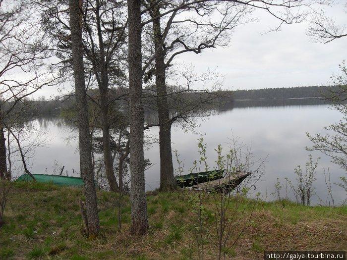 Шепелевское озеро (погранзона)