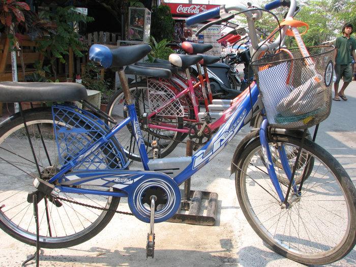 велосипеды самые обычные. все с подножкой.