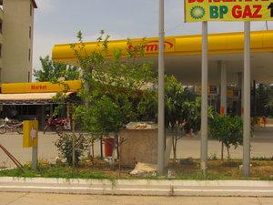 Только в Турции на автозаправках разводят кур! (приглядитесь к переднему плану)
