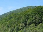 В период «застоя» объёмы лесозаготовки упали и узкоколейка переживает период упадка, а наводнения 1997, 2000 и 2008 годов разрушили половину действующих линий.