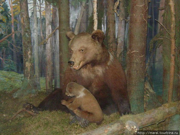 Маша родилась в глуши вологодского леса в 1988 году