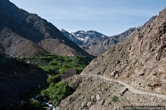 Тропа к приюту, из которого начинается восхождение на Тубкаль,ведет через зеленые оазисы. Предприимчивые арабы понаставили на маршруте прилавков и продают апельсиновый сок — куда ж без него в Марокко.