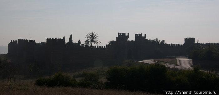 Эти мрачные стены огораживают Челлу — средневековый некрополь, воздвигнутый на месте римского поселения. Если окрестности Рабата напоминают подмосковные луга, то здесь — настоящая тропическая Африка.