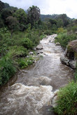 Река на окраине городка