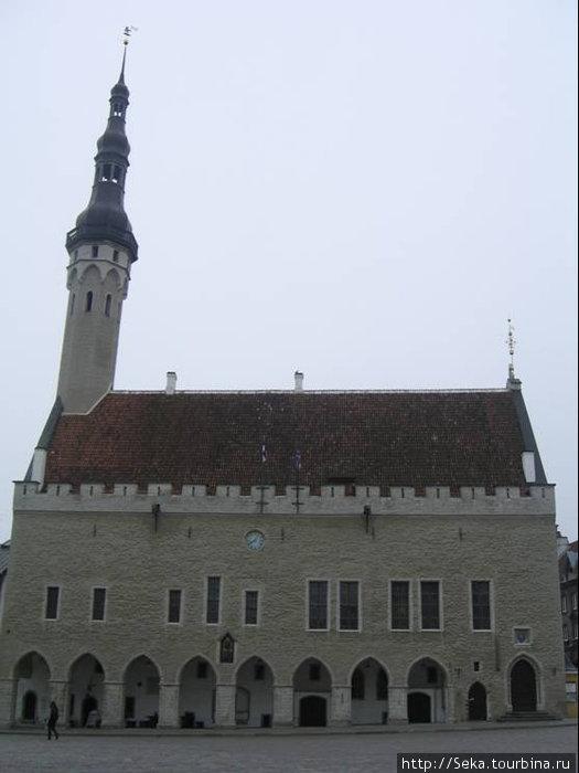 Ратуша Таллина / Tallinn Town Hall