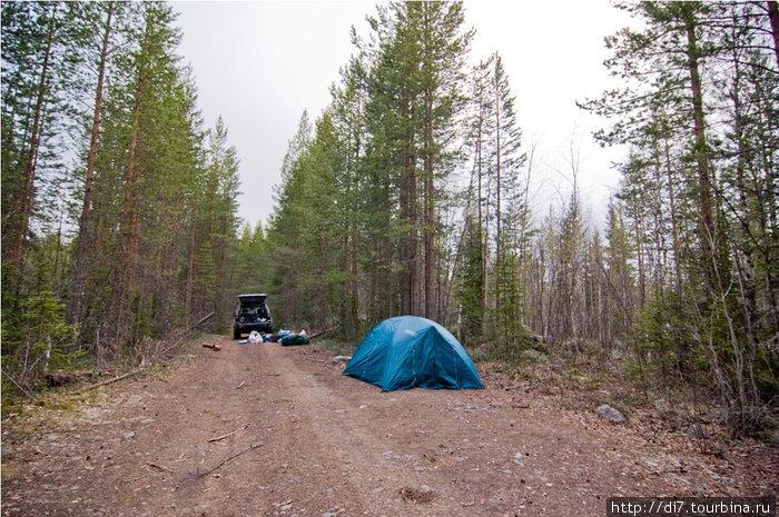 Зачем искать место для ночлега в лесу-по дороге все равно никто не ездит!