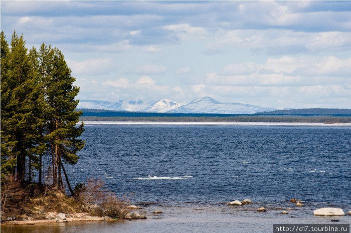 Озеро Колвицкое. На горизонте-гора Кососельга