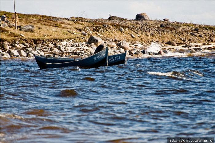 Побережье Белого моря