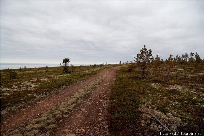 Старая дорога по побережью Белого моря