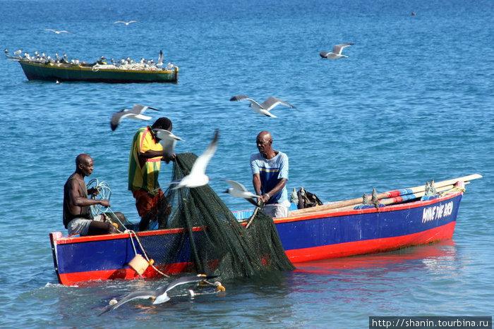 рыбак с рыболовной сетью